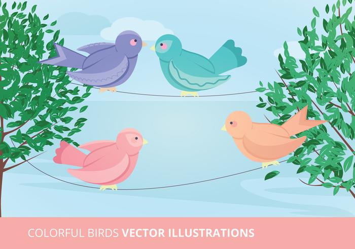 Birds Vector Illustration
