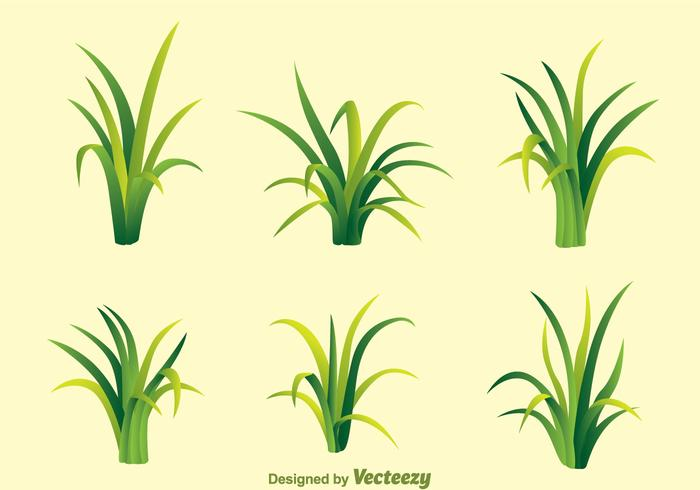 grass free vector art 19503 free downloads rh vecteezy com grass factory oxford grass factory oxford