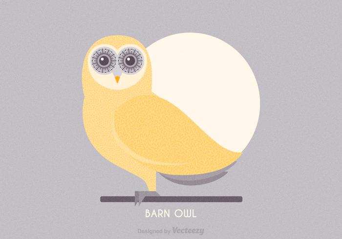 Barn Owl Vector Illustration