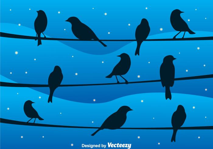 Bird On A Wire At Night Vector
