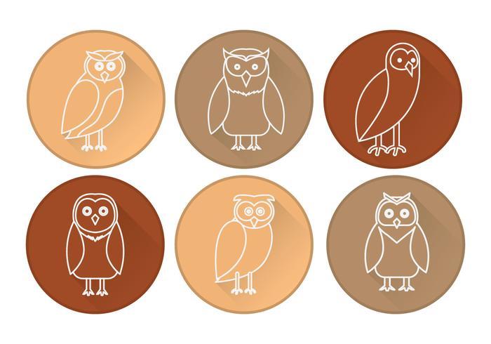 Barn Owl Icon Vector