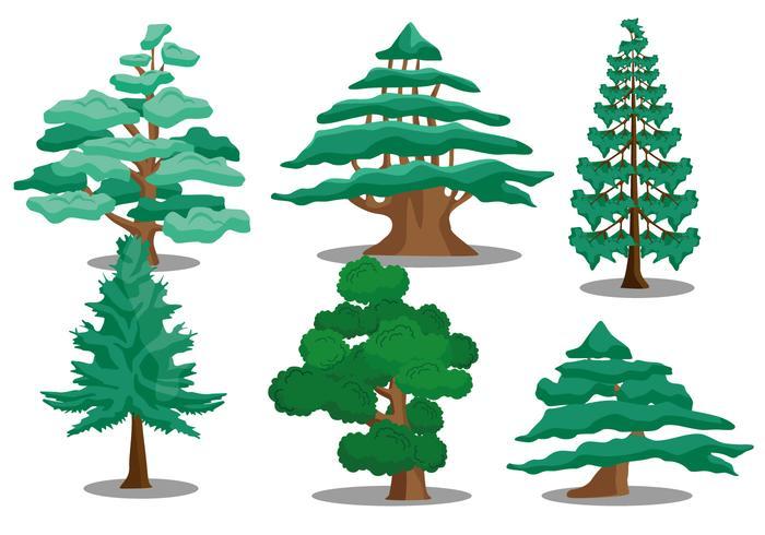 Cedar tree vectors - Download Free Vector Art, Stock Graphics & Images