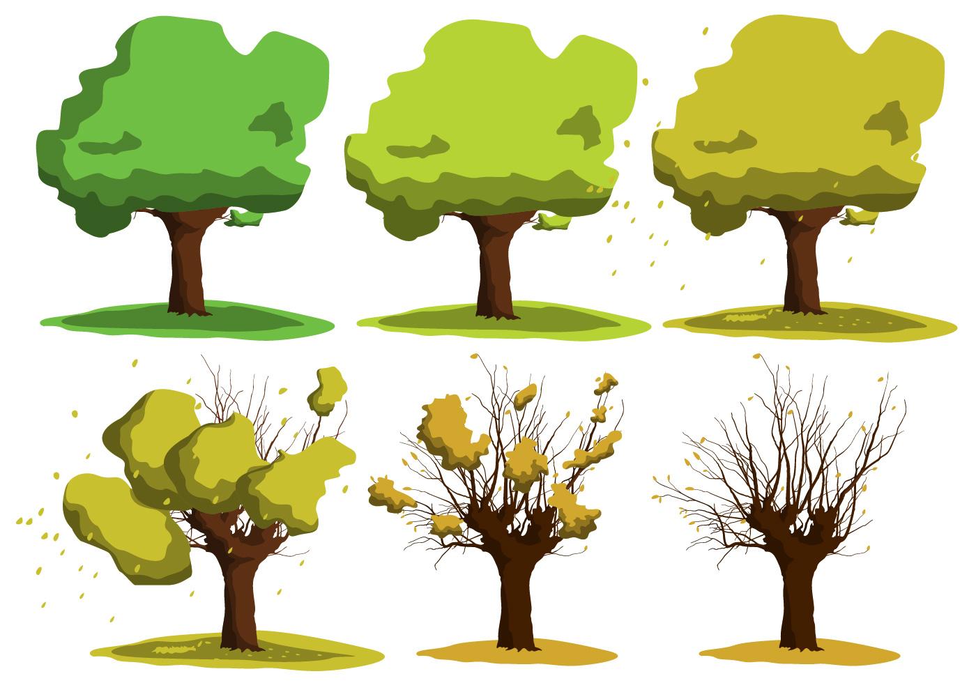 Growing Acacia Tree Vectors - Download Free Vectors ...