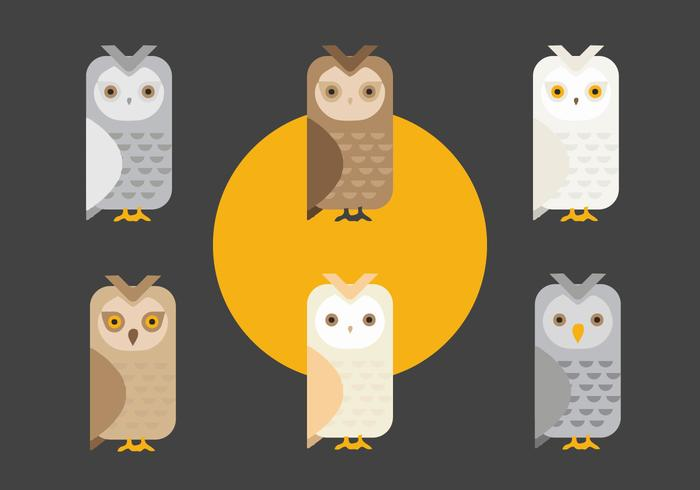 FREE BARN OWL VECTOR