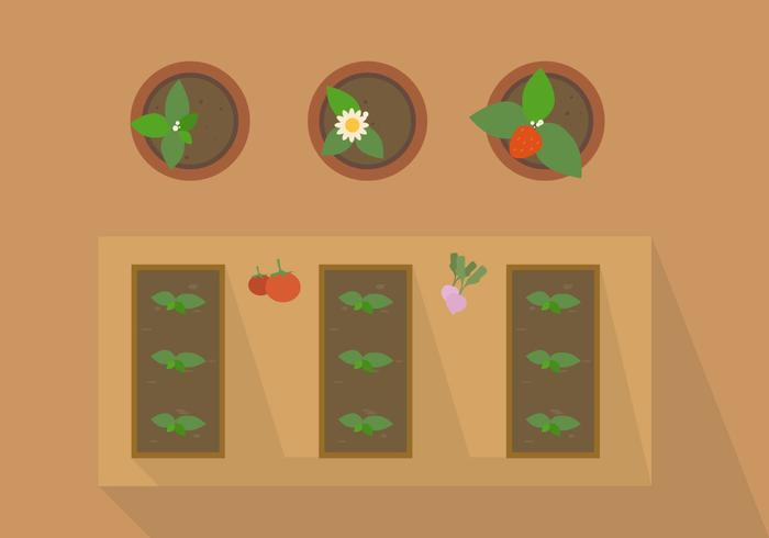 FREE PLANT FROM TOP VECTOR