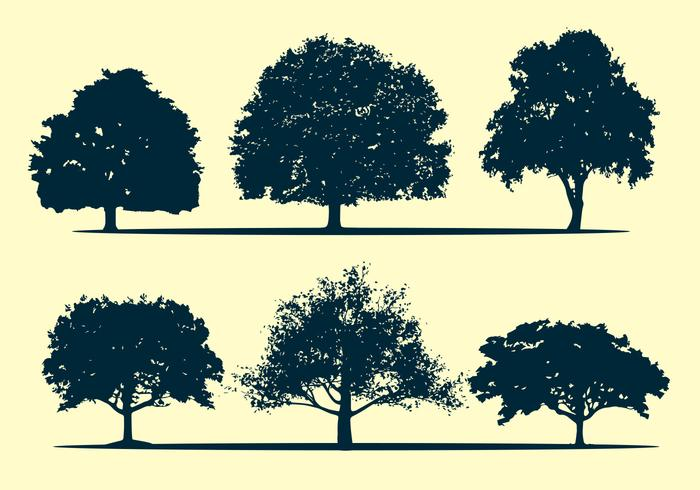 Oak tree silhouette vectors