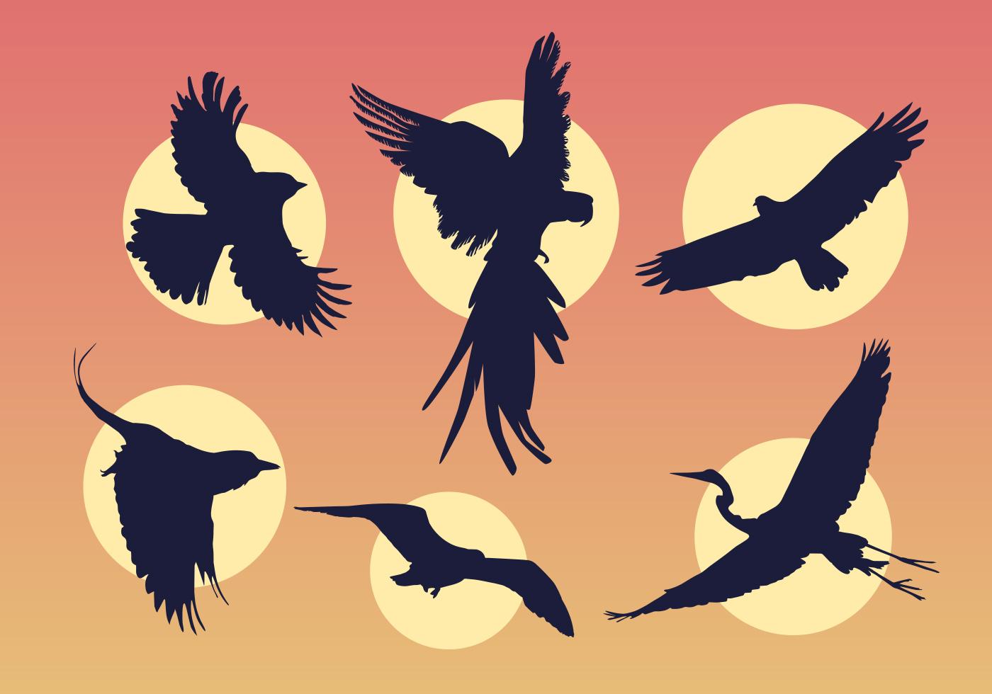 Flying birds - Download Free Vector Art, Stock Graphics ... - photo#10