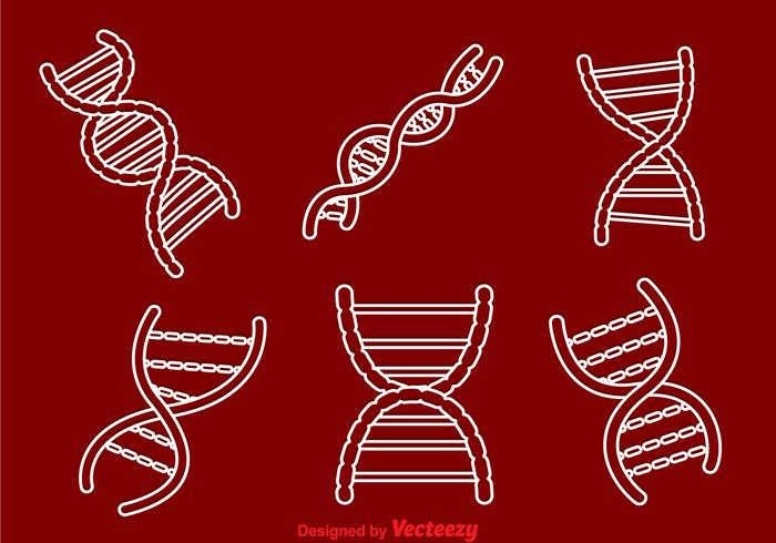 Double Helix Outline Icons