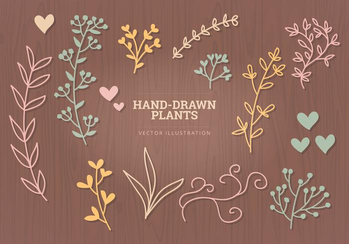Vector Hand-drawn Elements