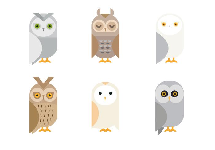 Free Cute Owl Vector