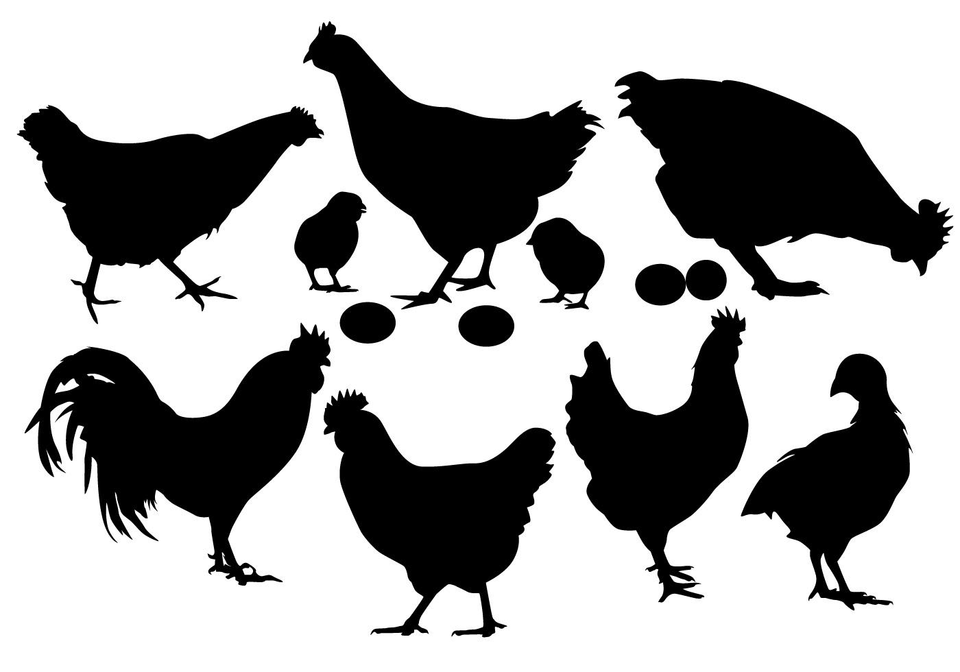 Chicken Silhouette Vector