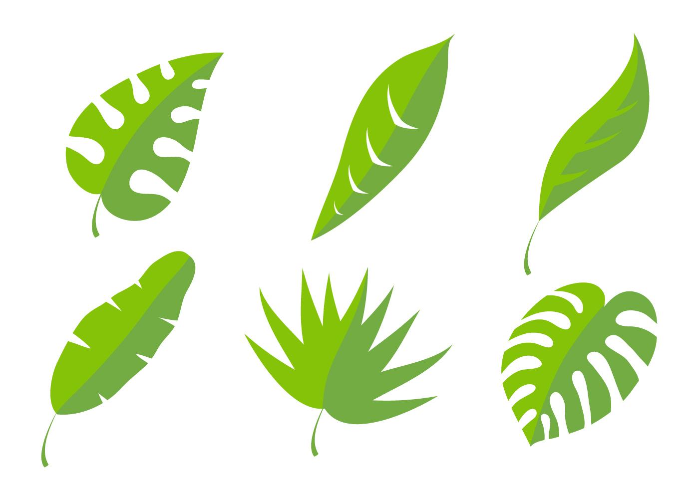 palm leaf vectors download free vector art stock graphics images rh vecteezy com leaf vector image leaf vector icon