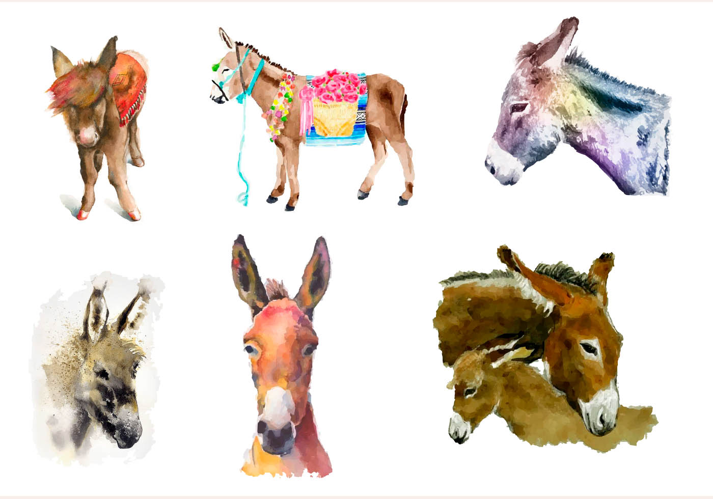 Donkey Painted With Watercolor Download Free Vector Art
