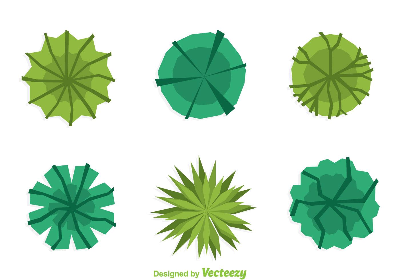 Projeto plano da parte superior da planta - Download Vetores e ... for Plant Top View Vector  181obs