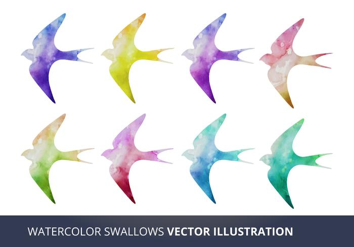 Watercolor Vector Swallows