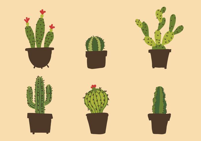 Vektor kaktus illustration uppsättning