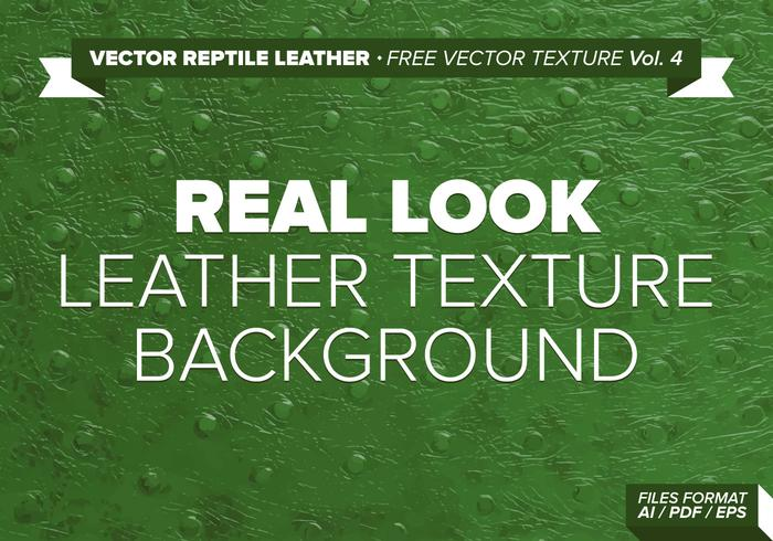 Vector Reptile Leather Free Vector Texture Vol. 4