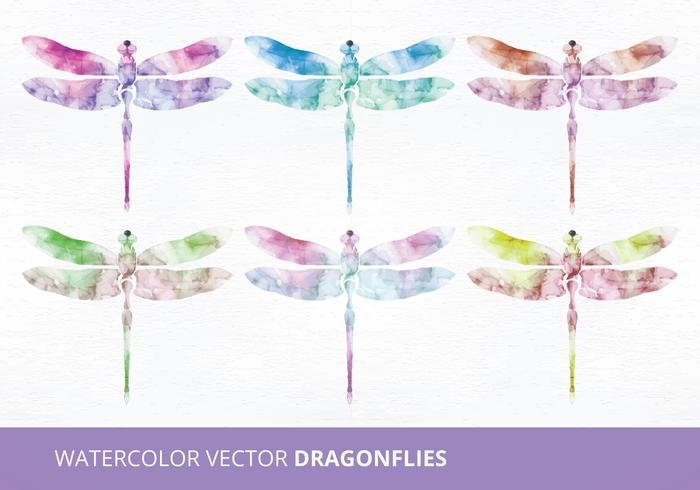 Watercolor Vector Dragonflies