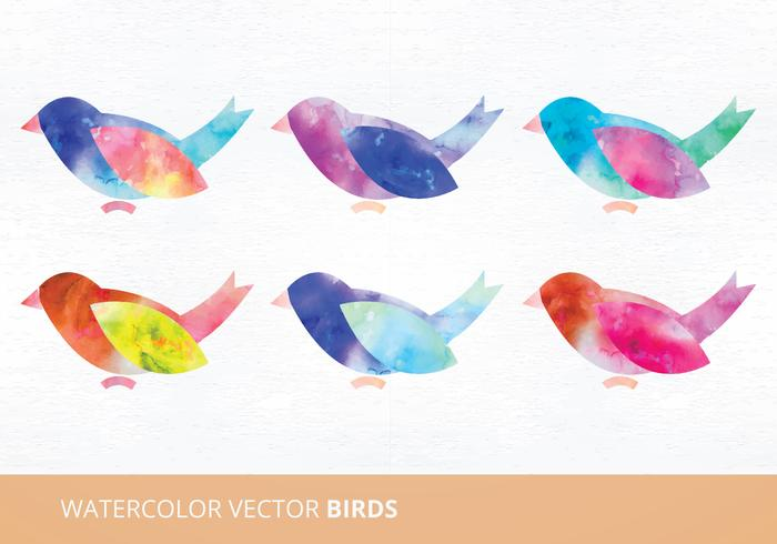 Watercolor Birds Vector Illustration