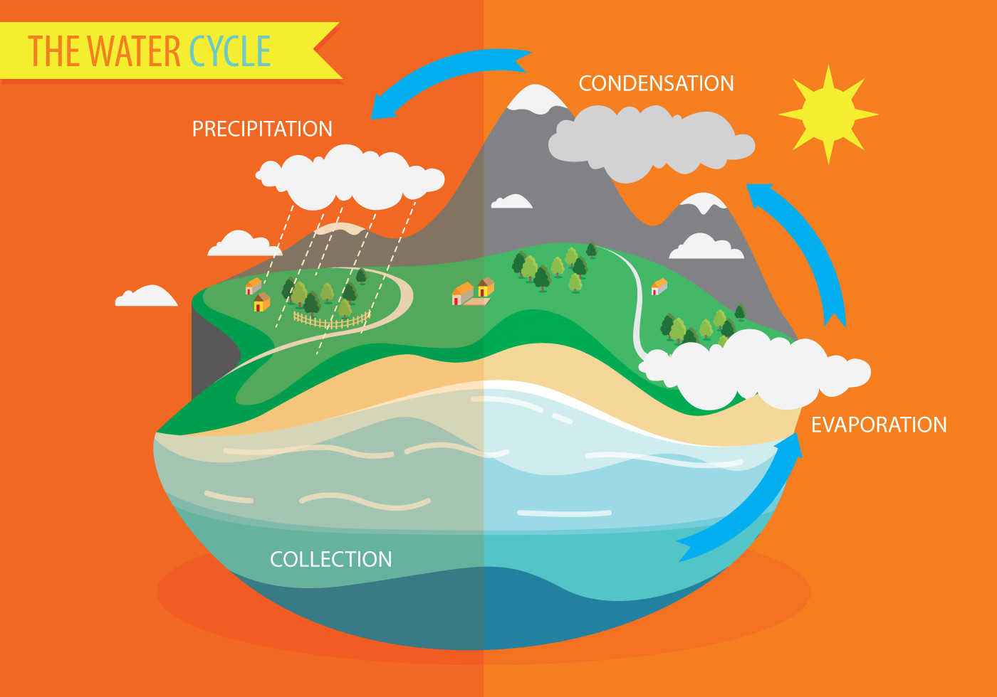 Water Cycle Diagram Vector - Download Free Vector Art ...