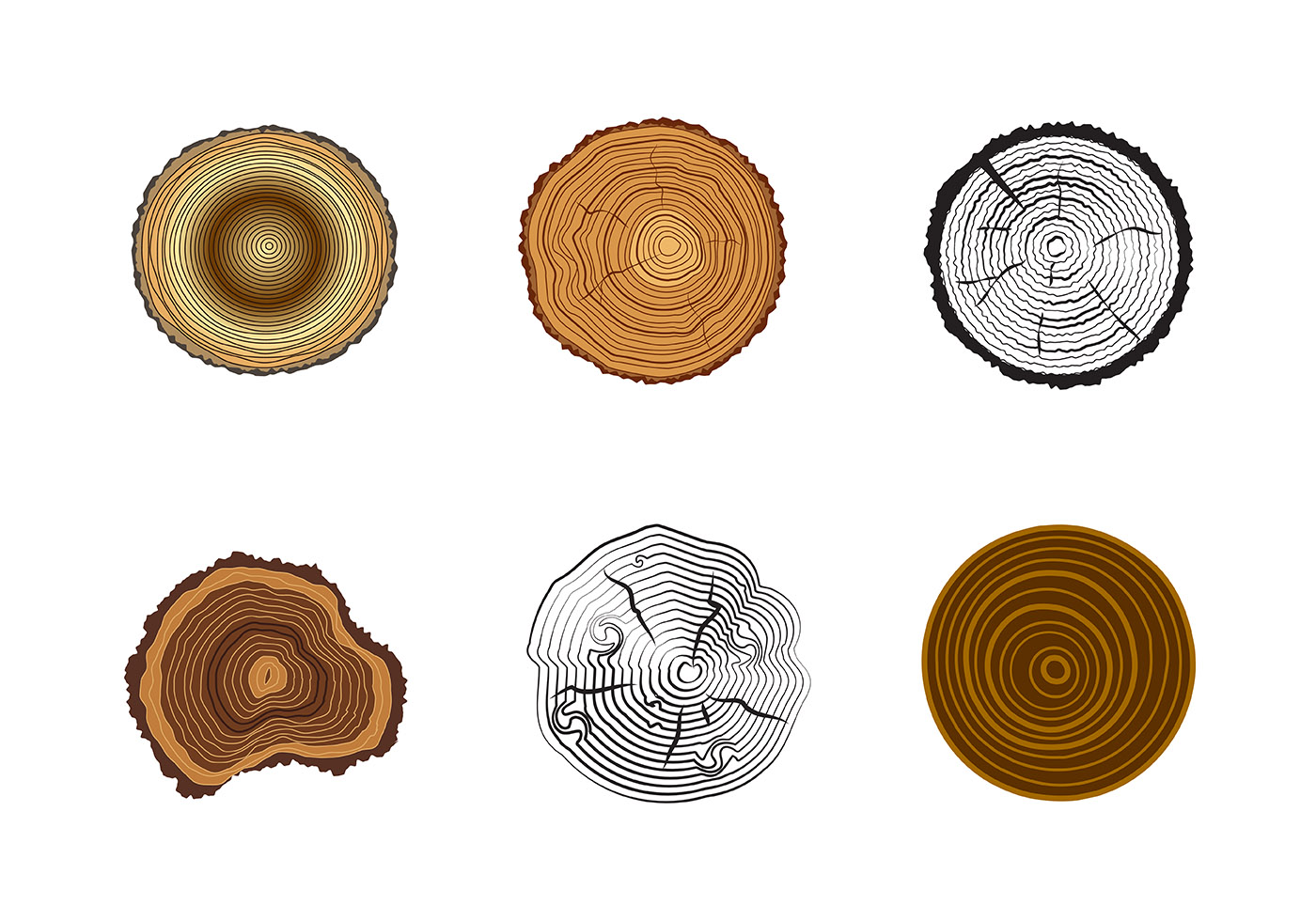 Free Tree Rings Vector - Download Free Vectors, Clipart ...