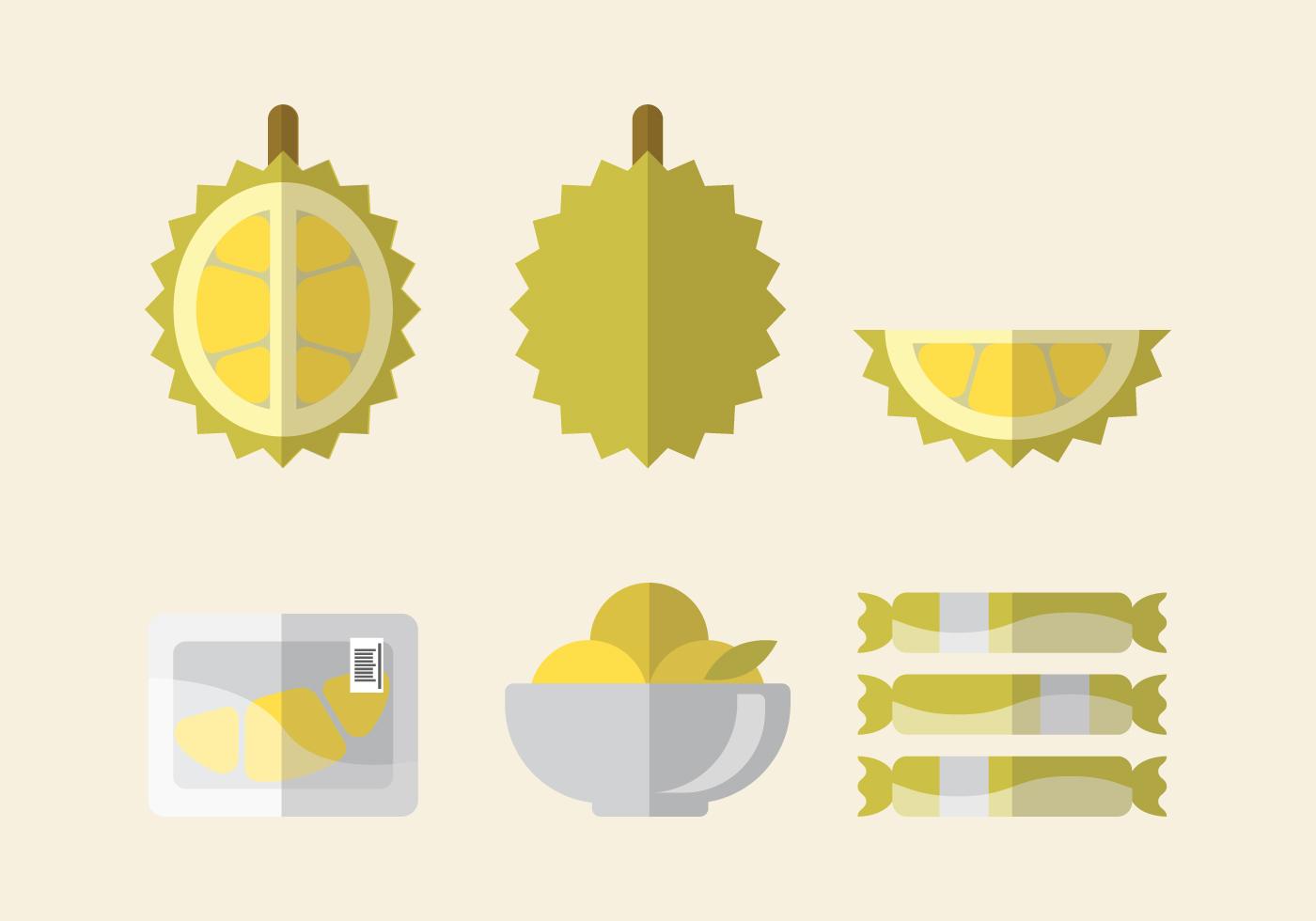 Vector Durian Set Download Free Vector Art Stock