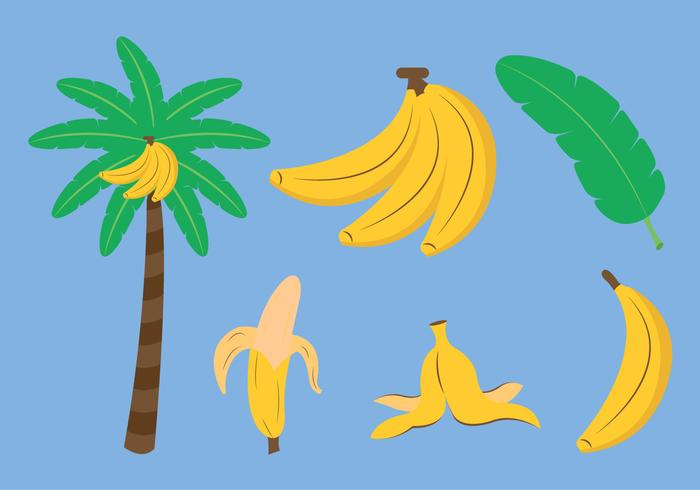 Conjunto de vetores de banana