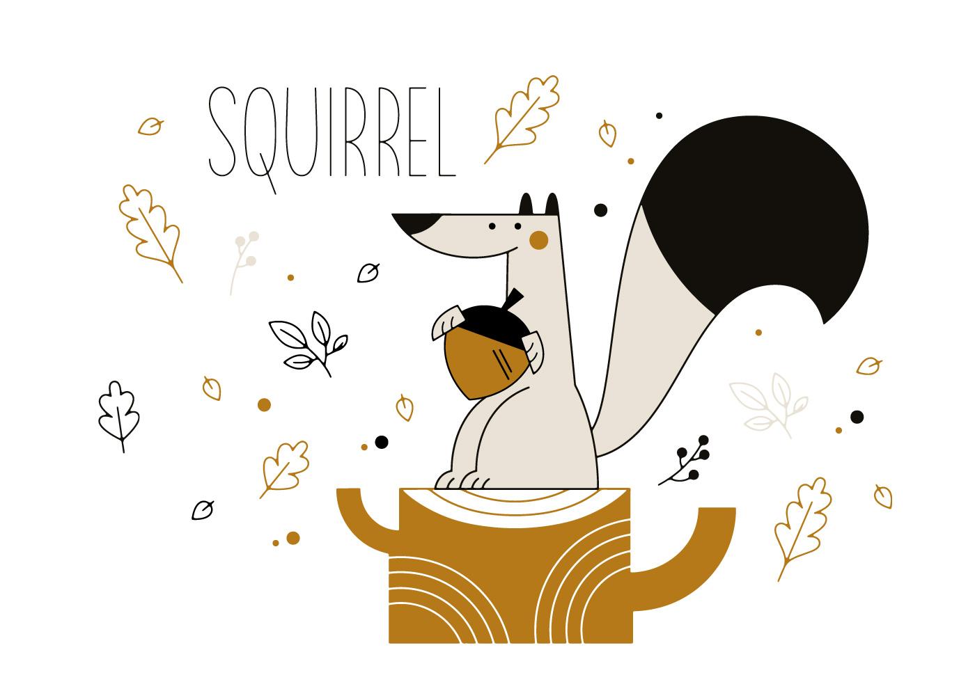 squirrel vector download free vector art stock graphics