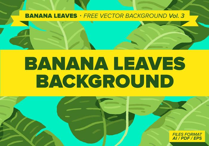 Banana Leaves Free Vector Background Vol. 3