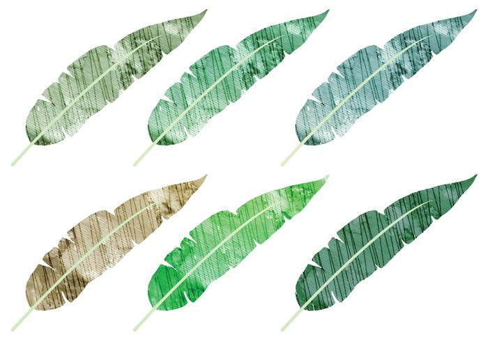 Watercolor Banana Leaves Vectors