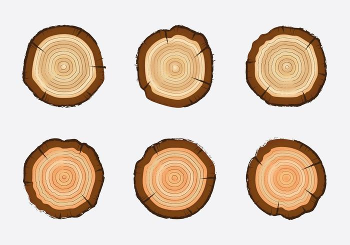 free tree rings vector illustration download free vector art rh vecteezy com wood texture vectors free wood texture vector illustrator