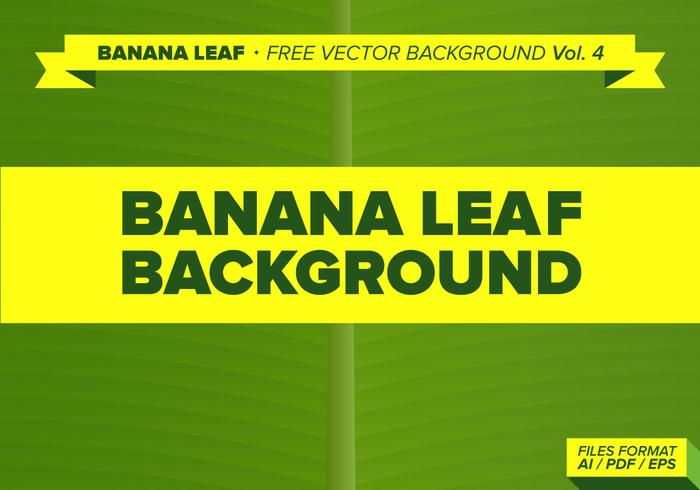 Banana Leaf Free Vector Background Vol. 3