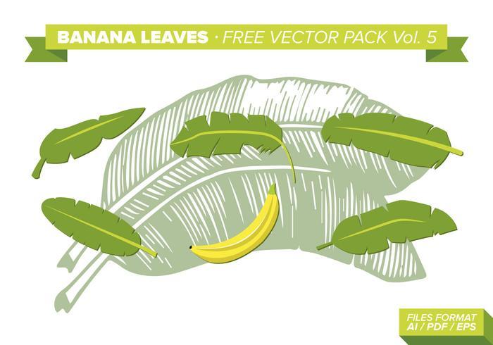 Bananenbladeren Gratis Vector Pack Vol. 5
