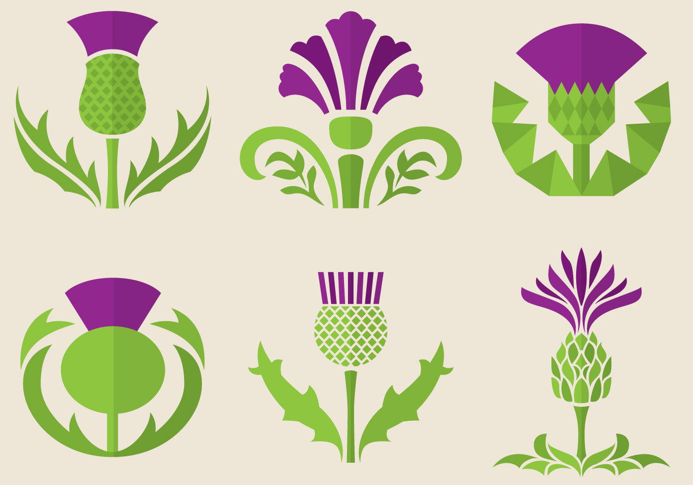 Thistle Flowers - Download Free Vectors, Clipart Graphics ...