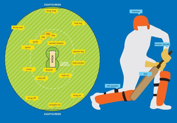 Campo da cricket e attrezzature