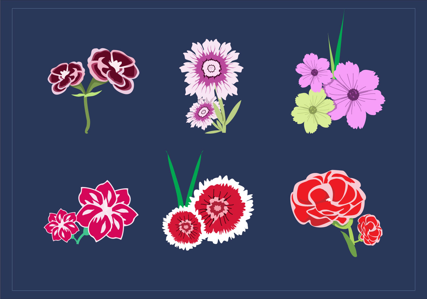 carnation bouquet vectors