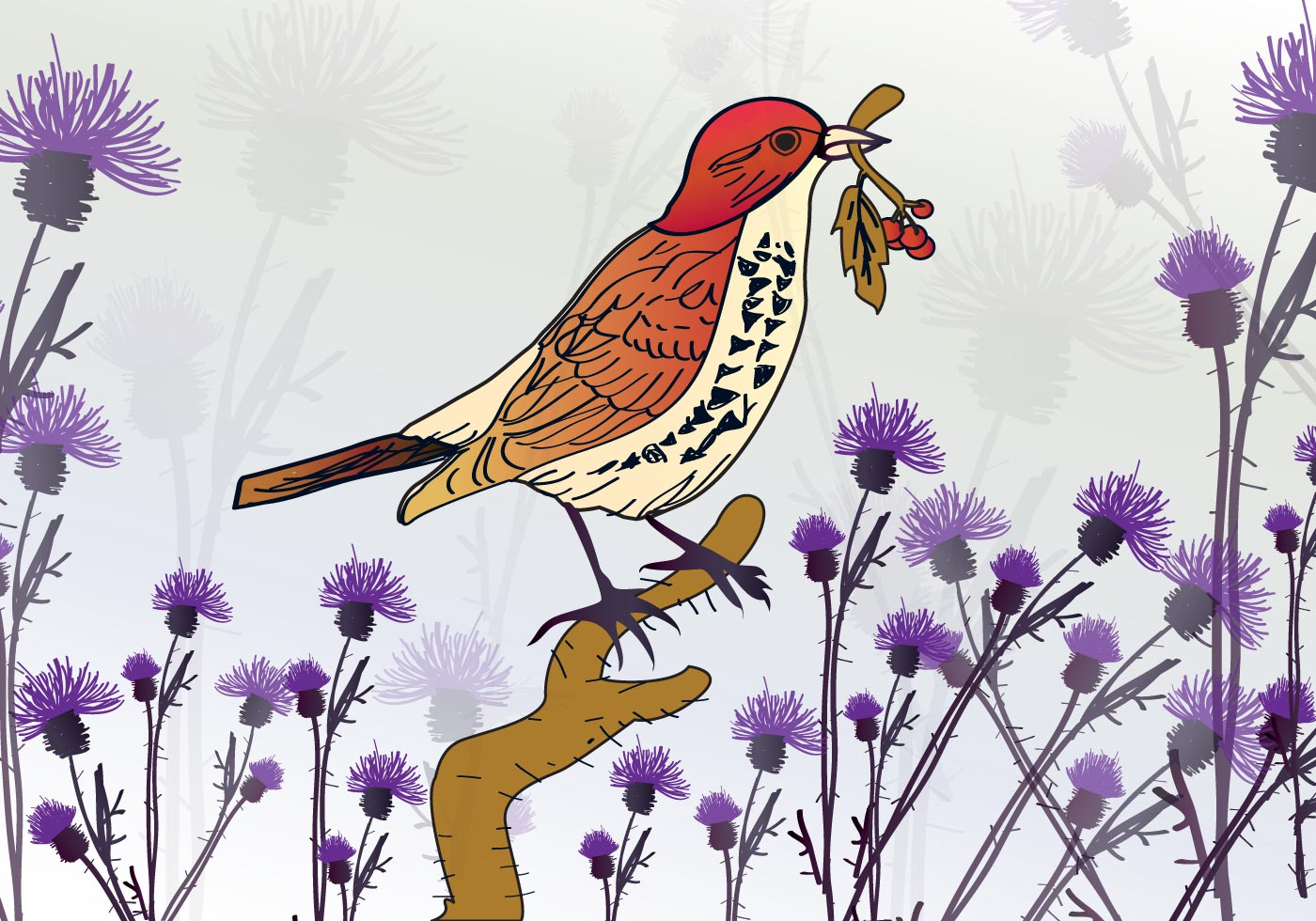 鳥插圖 免費下載   天天瘋後製