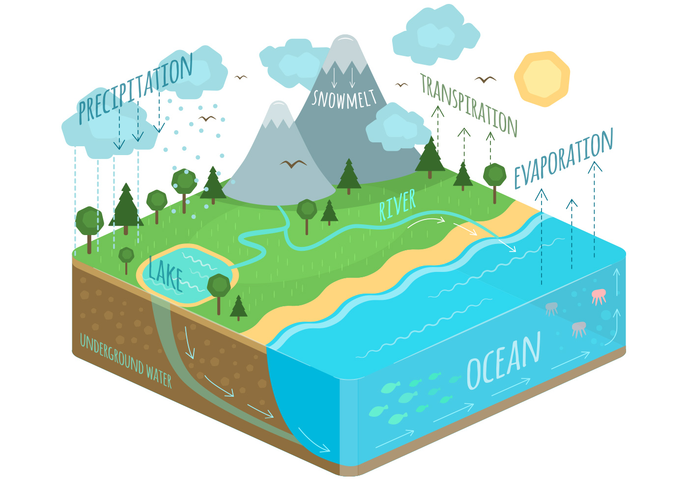 Water Cycle Download Free Vector Art Stock Graphics