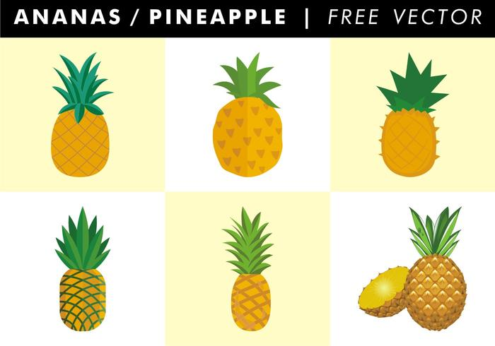 Ananas / Pineapple Free Vector