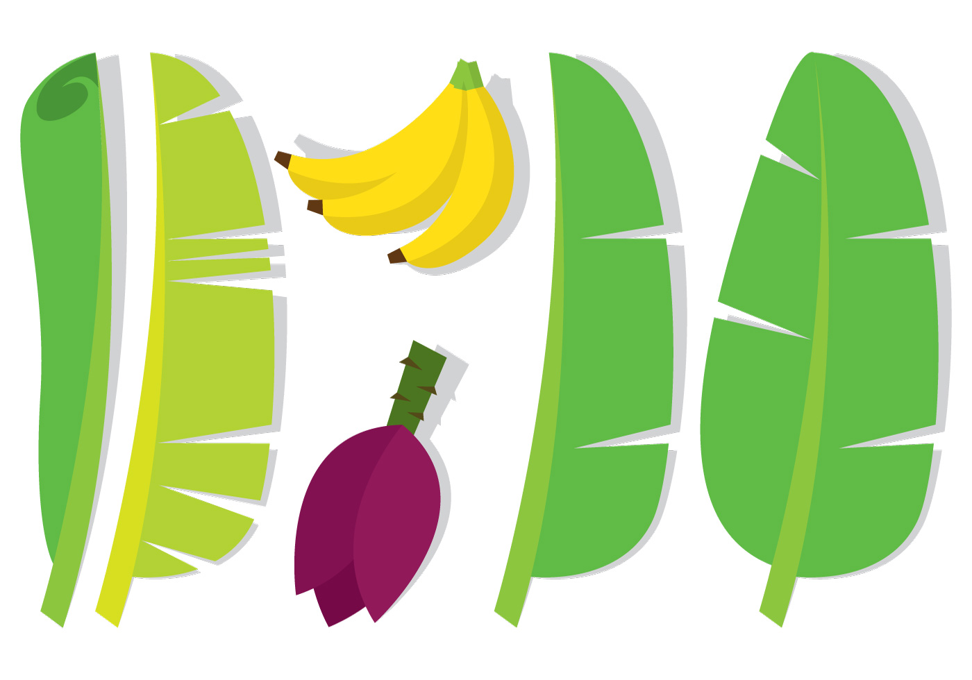 ... Leaf and Fruit - Download Free Vector Art, Stock Graphics & Images
