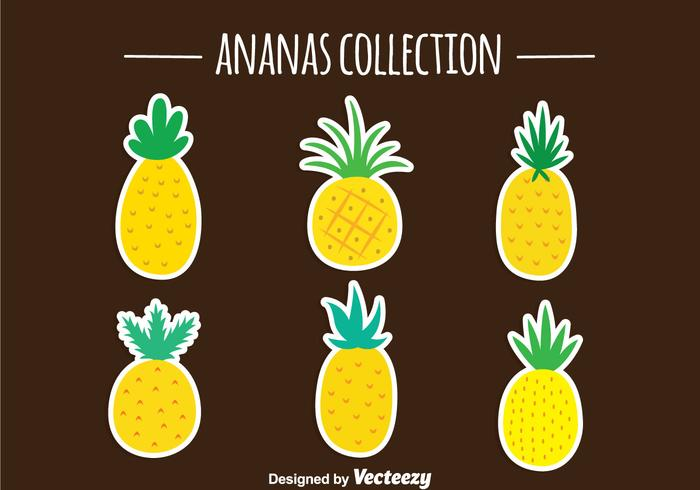 Pineapple Ananas Vector Collection