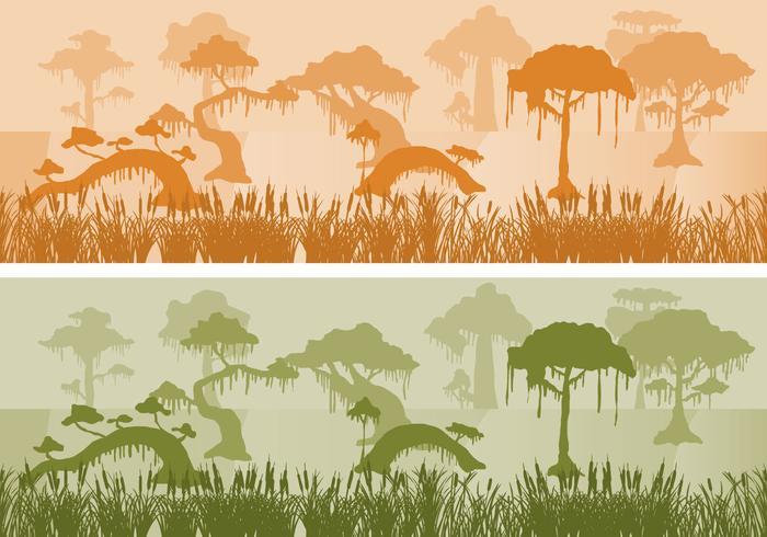 Swamp Landscapes