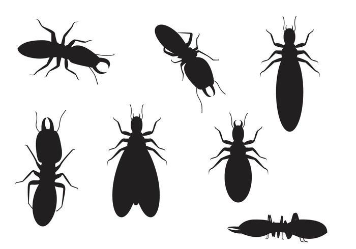 Termite Silhouette Vectors