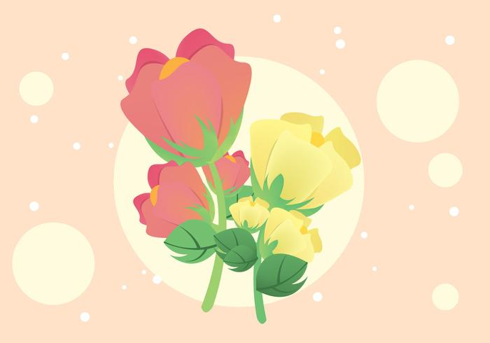Free Cotton Plant Flower Illustration Vector