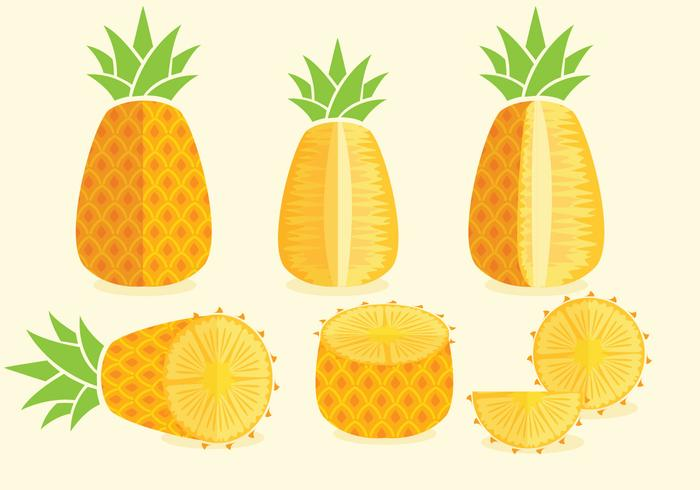 Vecteurs Ananas