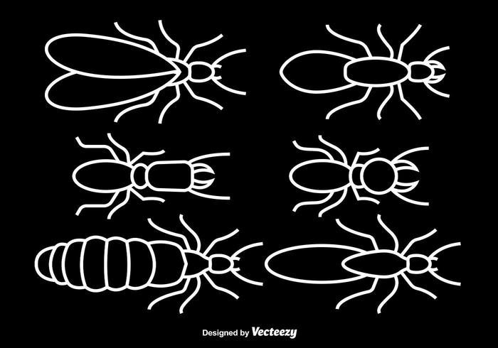 White stroke termites