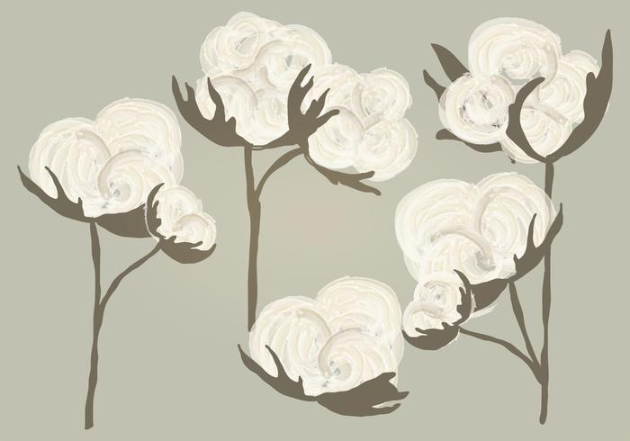 Vector Watercolor Cotton Illustration