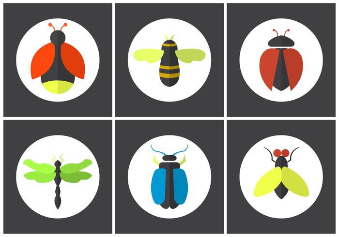 Set of Vector Bugs