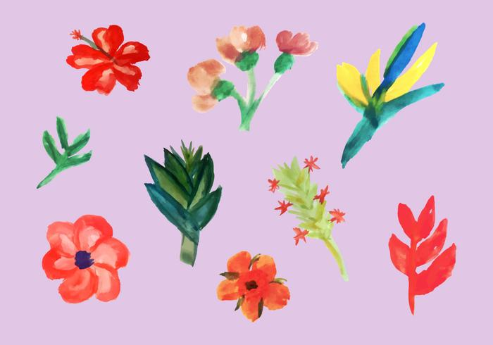 Free Tropical Flowers Vector Pack