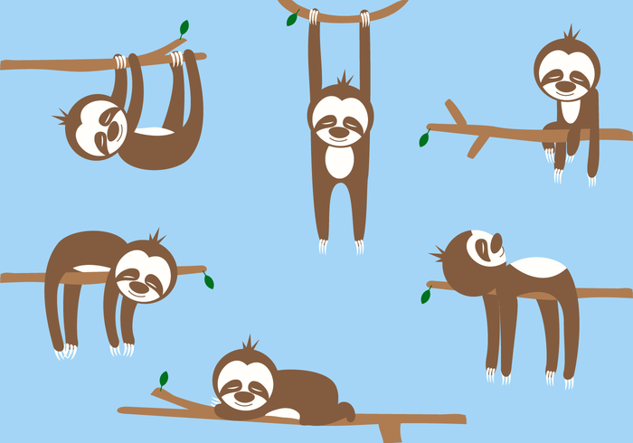 Free Sloth Cartoon Vector